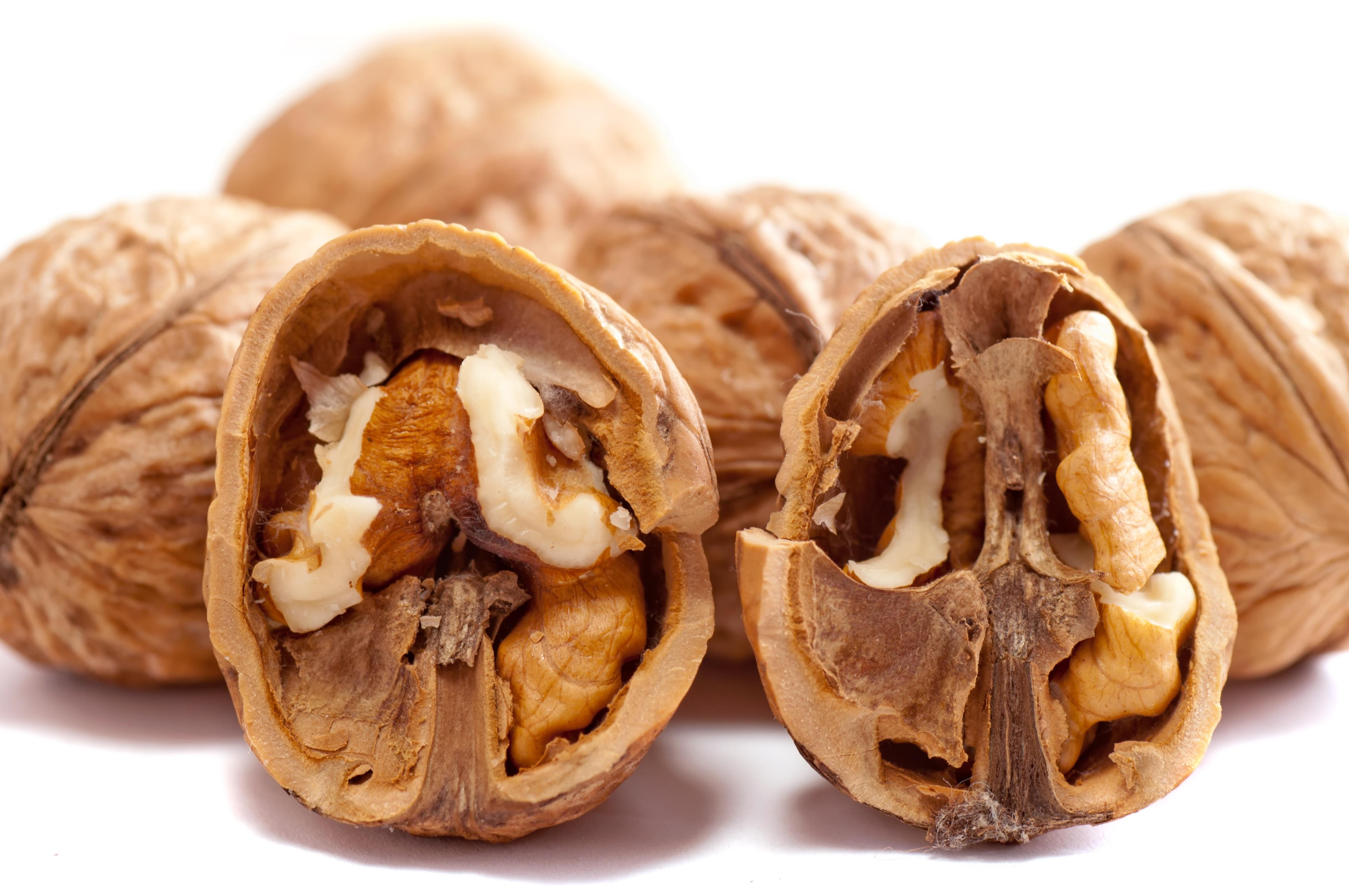walnuts-2312506.jpg